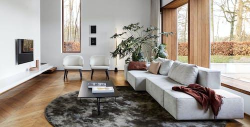 Montis Furniture image