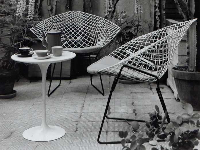 Knoll Bertoia Saarinen And Cactii