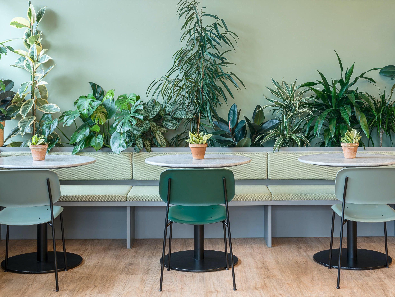 Kiwi Pom Gardeners Retreat 1 image